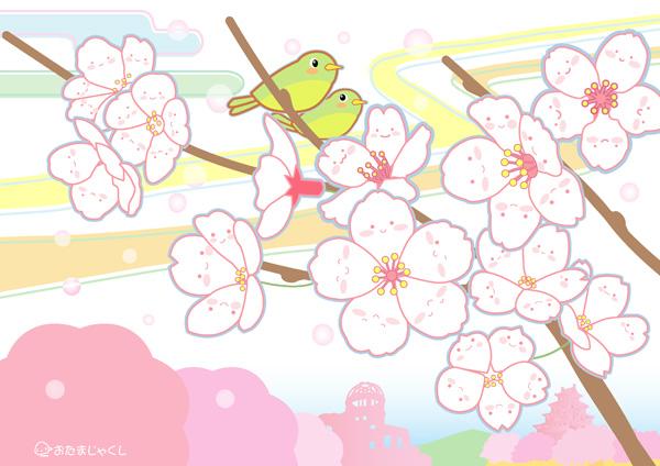 桜3-2-m.jpg